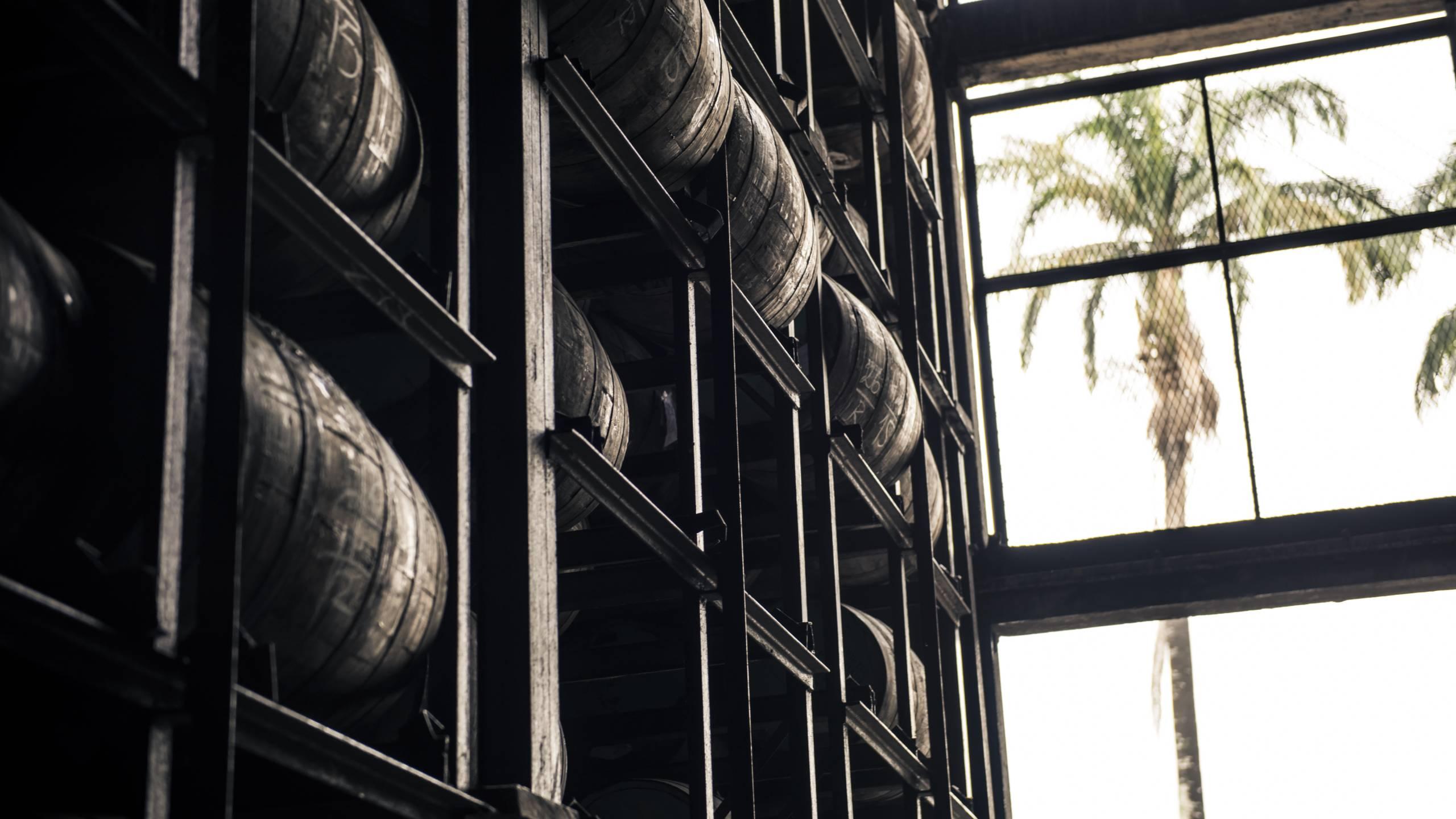 Aging-Rum-Barrels
